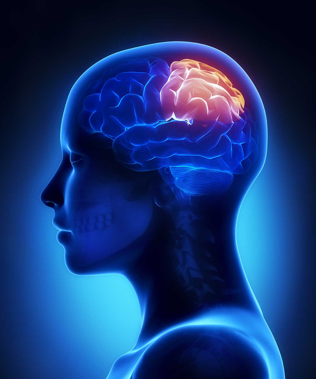 How What You Eat Affects Your Brain Cabot Health