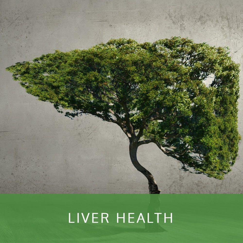 Cabot Health | Liver Health