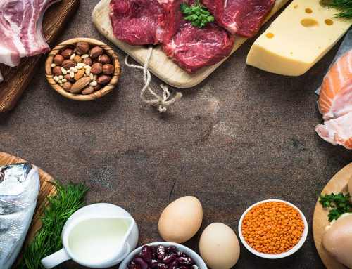 The Top 12 Sources Of Protein