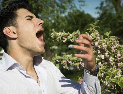 Is Your Sluggish Liver Causing Your Seasonal Allergies?